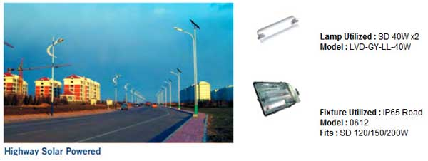 Highway and road side lvd induction lights