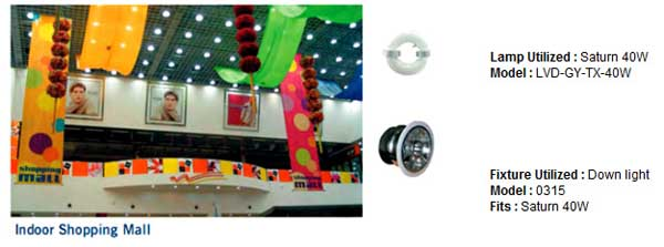 Indoor Shopping Malls and Mart lvd induction lights